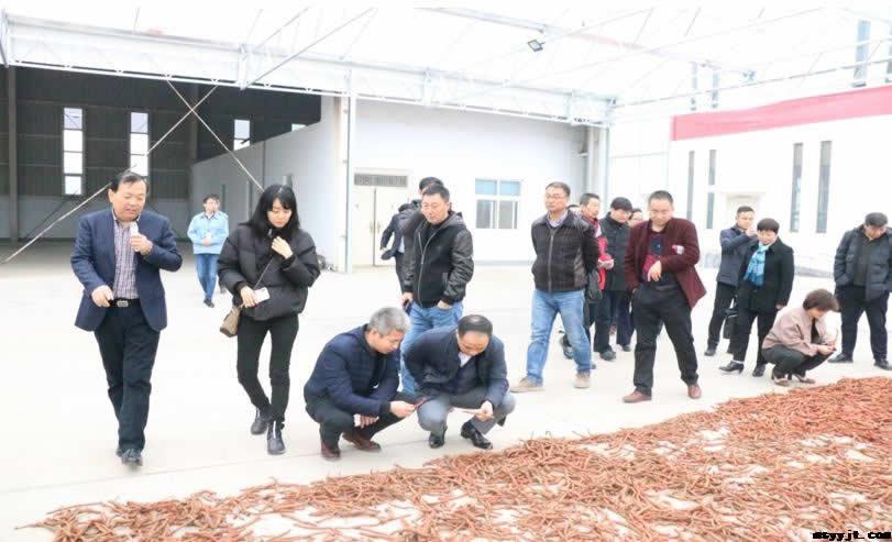 中国中药协会精准中药专业委员会河南道地药材研讨在民生药业集团珍医堂制药有限公司成功召开